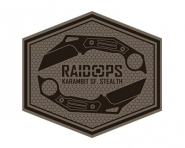 RaidOps (CША)
