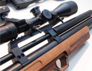 Охота и стрельба