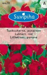 """Семена душистого горошка """"Lillhernes, punane"""" 3 гр."""