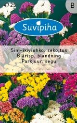 """Семена Лимониума """"Sini-ikviuhko"""" 0,25"""