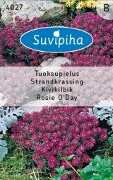 """Семена цветов Лобулярия """"Rosie O Day"""" 0,5 гр."""