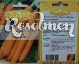 Морковь Amsterdam  2700 шт