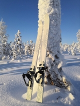Охотничьи лыжи  Fiiber 173 см.